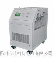 智能蓄电池充放电测试仪(一体机) FECT2000E
