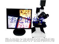 L2003金相數碼檢測顯微鏡 L2003