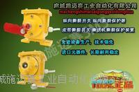 供应电厂输煤皮带【纵向撕裂保护装置SLKG-115J-PT】 SLKG-115J-PT