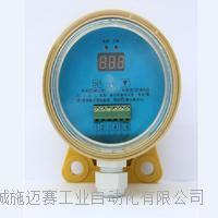 皮带秤打滑检测器HSDH-ZN02 ESPBYL-050