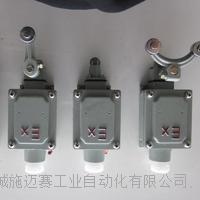 防爆云顶娱乐4008com官网BZX51-5D CT6