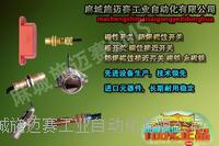 磁感位置开关KRN-U85-PK安全可靠 GUC30-100(DC24V)