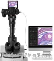 数码相机显微镜拍摄系统 SONY全尺寸无镜目#7 超级系统