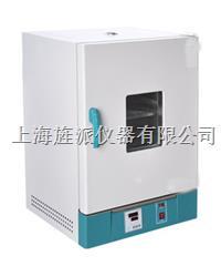 101-3S立式電熱恒溫干燥箱 101-3S