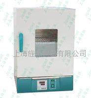 GRX-9203A熱空氣消毒箱干烤**箱 GRX-9203A