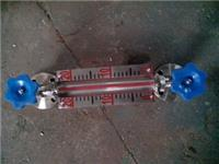 LFJ-HG5型玻璃管液位計 LFJ-HG5