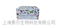 人單純皰疹病毒抗原2(HSV-2)ELISA試劑盒
