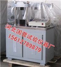 水泥恒应力压力机 DYE-300S型
