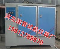 混凝土標準養護箱 SHBY-60B型