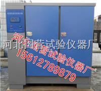 混凝土標準養護箱 SHBY-60