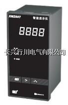 帶通訊多段溫濕度調節儀 XMT9007-8P8K