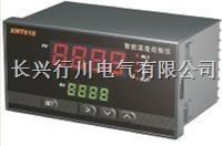 4路可編程溫濕度控制器 XMTHKPWT