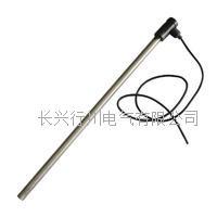 耐腐蝕單頭電熱管