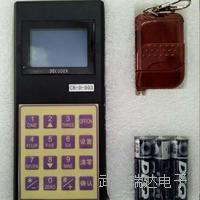 咸宁市数字磅遥控器多少钱