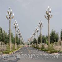 太陽能路燈10