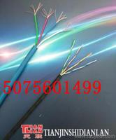 墊江縣櫃內接線秋葵视频安卓ioses黄80米X10根,2芯,1.0平方,硬線字母含義