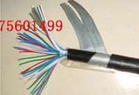 龍遊縣單模光纖(鎧裝、16芯)型號解釋