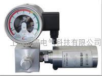 SGSHSG系列SF6气体微水密度在线监测系统 SGSHSG