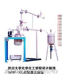 聚酯反应釜装置 WHF