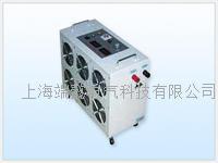 FST-FD200蓄电池组容量测试仪