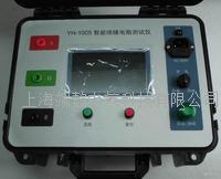 YH-1005A智能绝缘电阻测试仪,高压绝缘电阻测试仪,数字式绝缘电阻测试仪 YH-1005A