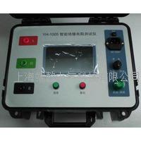 YH-1005智能绝缘电阻仪,绝缘电阻测试仪,数字式绝缘电阻测试仪 YH-1005
