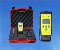 便携式氢气检漏仪 LY100