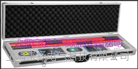 GAGAN卫星授时高低压核相仪 LYWHX-9800