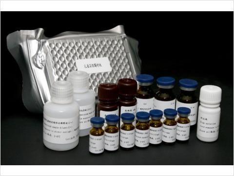 96T,48TTF试剂盒,兔组织因子Elisa试剂盒