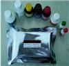 兔子皮质酮/肾上腺酮(CORT)ELISA检测试剂盒说明书