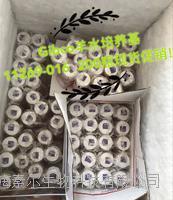 新型二代羊水培养基 11269-026