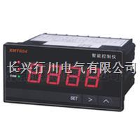 彩屏无纸记录仪 XMTHR848K