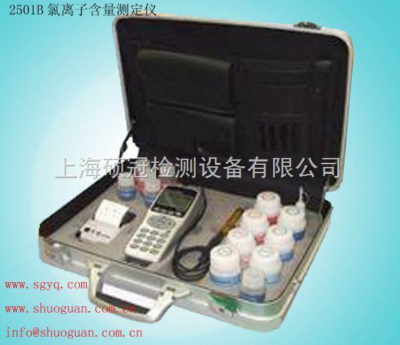 2501A氯离子含量测试仪