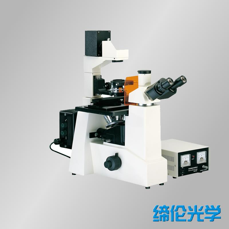 DXY-1倒置荧光显微镜